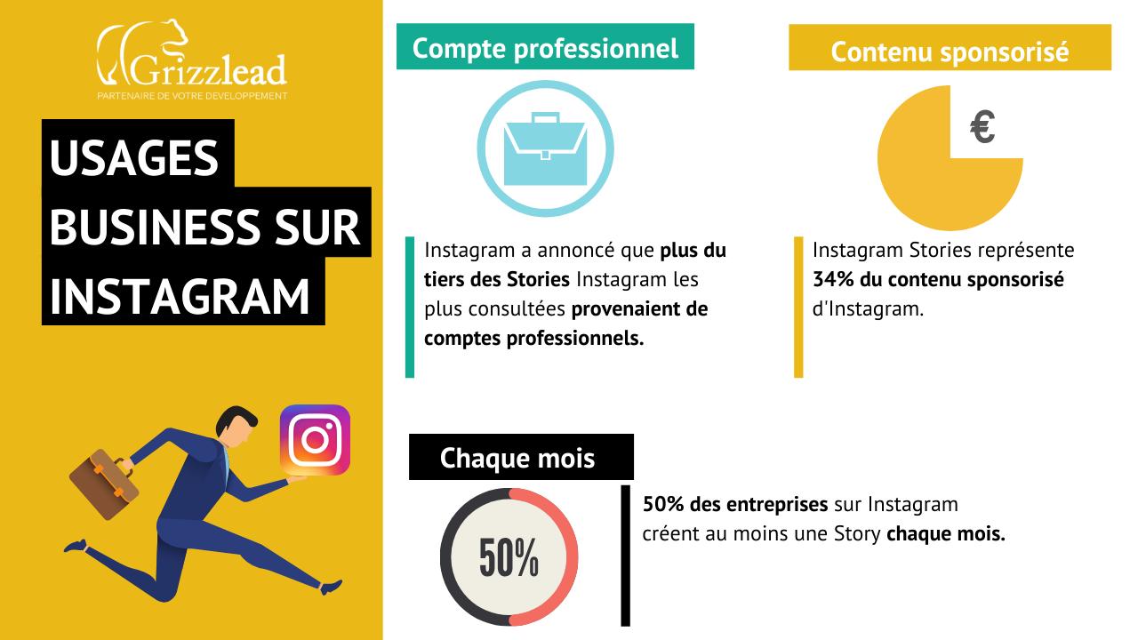 Infographie sur les usages d'Instagram Story par les entreprises. Un tiers des stories proviennent de comptes professionnels.